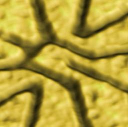 quantum dots thesis